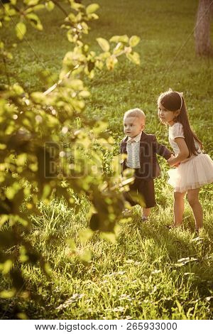 Active Children Play On Summer Day, Activity. Active Lifestyle, Childhood, Energy