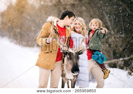 Portrait Of Happy Family Blowing Winter Snow With A Beautiful Deer