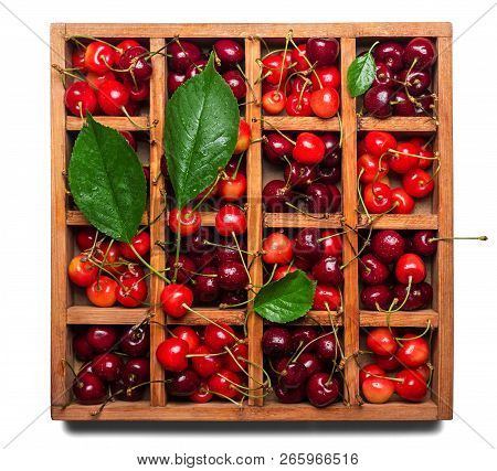 Fresh Juicy Berries Cherries And Leaves In A Wooden Box With Cells Isolated On White Background