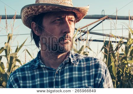 Portrait Of Confident Successful Farm Worker In Corn Field, Looking Determined And Full Of Confidenc