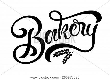 Hand Sketched Bakery Lettering Typography With Wheat Ears Isolated On White Background. Concept For
