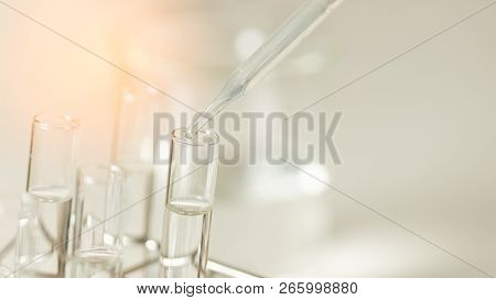 Dropping Chemical Liquid To Test Tube, Laboratory Research And Development Concept. Scientist Sample
