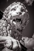 Statue of a lion, black in white. Classical marble lion sculpture close-up. Face of a ferocious lion with open mouth. poster