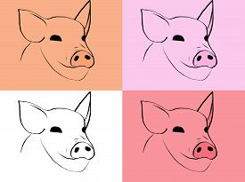 Simbol Of 2019 Year. Set Of Different Muzzle Pigs
