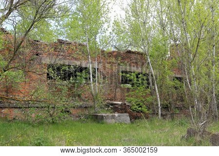 Ruin of lost abandoned industiral house in forest
