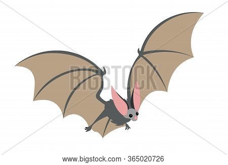 Cute Grey Flying Long-eared Bat, Bloodsucker, Symbol Of Vampire, Midnight & Halloween Holiday, Witch