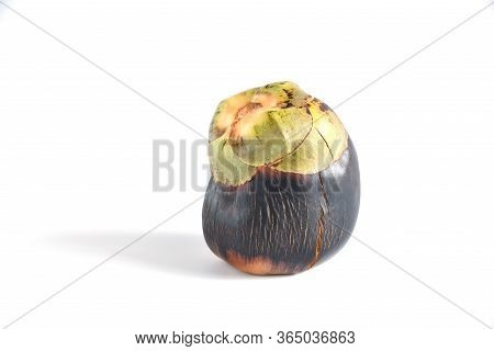 Asian Palmyra Palm, Toddy Palm, Sugar Palm Cambodian Palm (borassus Flabellifer L.) Isolated On Whit