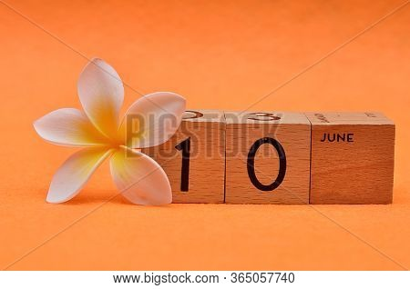 10 June On Wooden Blocks With A Frangipani Flower On An Orange Background