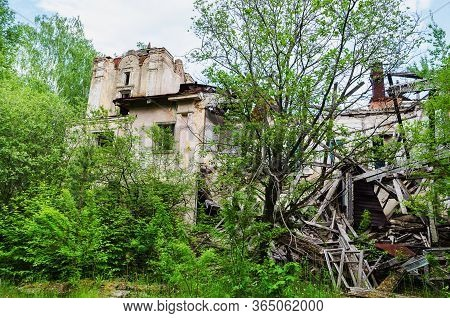 Destroyed Building In A Forest Area