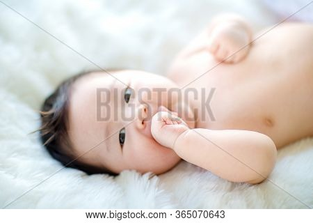 Lovely Baby Putting His Hands In His Mouth. Image For Background, Wallpaper, Copy Space, Fashion And