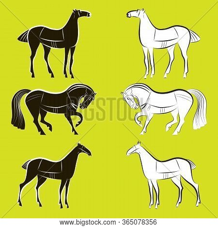 Horses Silhouettes Set. Graceful Animals Stand Opposite Each Other. Group Of Graceful Black And Whit