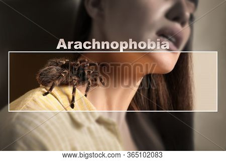 Closeup View Of Woman With Tarantula, Focus On Spider. Arachnophobia