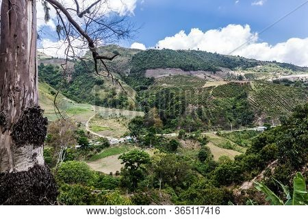dramatic image of caribbean countryside of farms and agriculture fields high in the caribbean mounta
