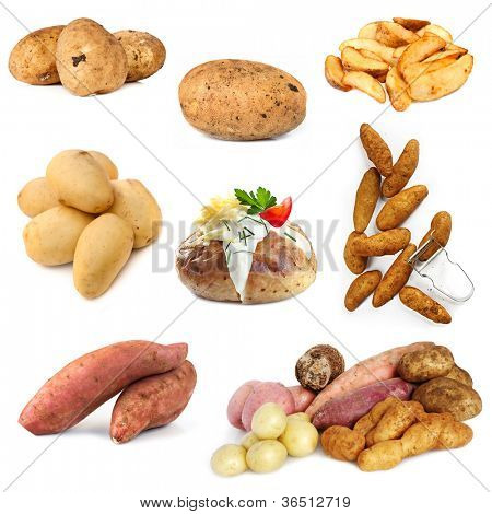 Various potato images, isolated on white background.  Includes raw and cooked.
