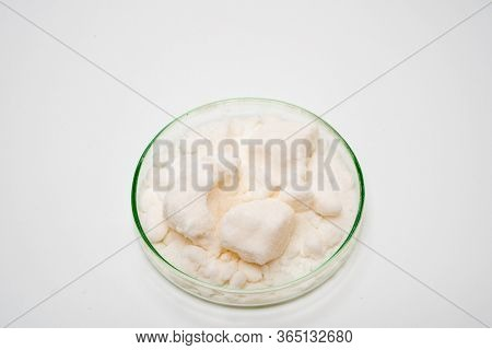 Potassium chloride in petri dish on white background