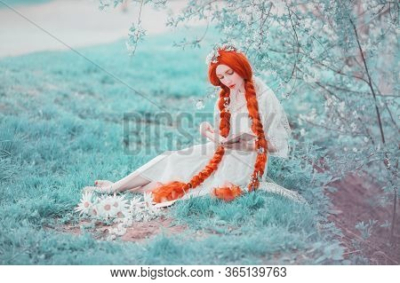 Young Unusual Redhead Renaissance Girl With Curly Hair Braided In Plait On A Spring Background. Beau