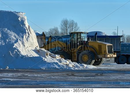Loading Winter Road Salt. A Loader Collecting Salt From A Large Pile To Be Used On Winter Roads.
