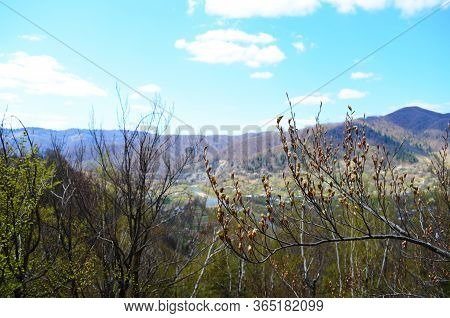 Spring In The Carpathian Mountains. Landscape Of Spring Carpathians. Spring Mountain Landscape With