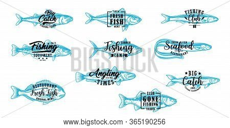 Fishing Club, Fish Market And Seafood Vector Symbols With Lettering. Angling, Fishing Tournament And