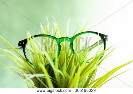 Vision Glasses, Vision Problems, Optometrist, Vision Improvement, Ophthalmologist Prescription