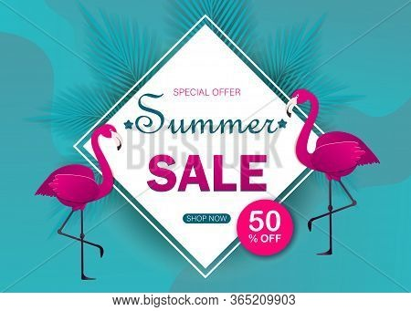 Summer sale banner modern design with flamingo and tropical leaves background. Tropical summer background and summer backdrop. Summer Promo badge for seasonal offer, summer promotion, summer advertising. Vector summer set background.