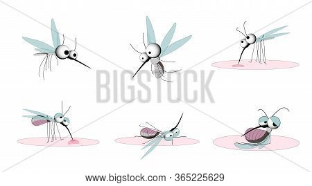 Insect Mosquito And Pest Illustration For Repellent Oil, Spray And Patches Ads, Poster. Flying Mosqu