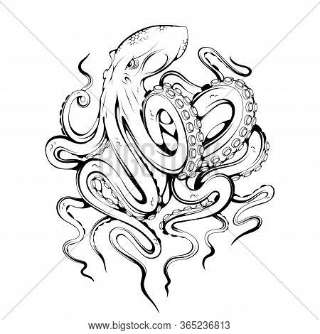 Octopus. Poulpe, Devilfish. Seafood Illustration. Tentacles Of An Octopus. Emblem Sketch Tattoo, Mas