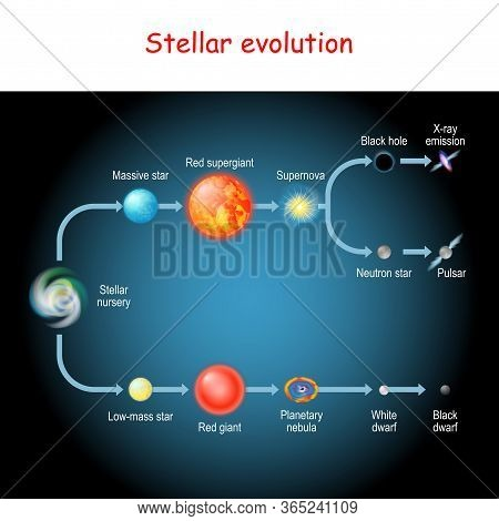 Stellar Evolution. Life Cycle Of A Star. From Stellar Nursery And Red Giant, To Black And White Dwar