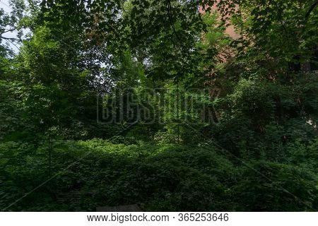A Last Park And Abandoned Trains On Green Landscape