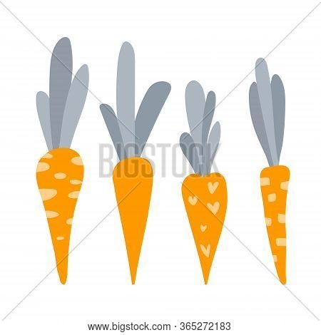 Funny Childish Illustrations With Cute Carrots. Four Cartoony Red Carrots Isolated On A White Backgr