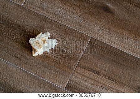 Bread Tossed To The Floor. Half Eaten Sandwich Thrown On The Floor. Discarded Sandwich. Thrown Into