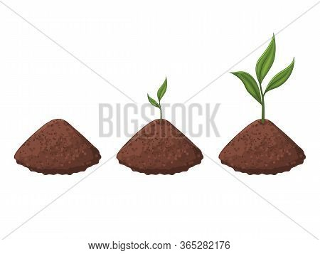 Germination Of The Sprout. The Plant Is Growing. Isolated Object On A White Background. Cartoon Styl