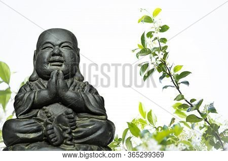 A View Of A Replica Statue Of The Buddha With Sky And A Star Anise In The Background