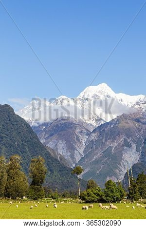 Southern Alps Landscapes. Mount Cook. South Island, New Zealand
