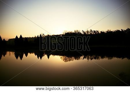 Pine Pond At Morning Sunrise, Reflections On The Surface, Still Life By The Water