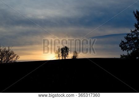 Memorable Tree On Top Of A Hill, Sunrise In The Fields, Morning Scenery