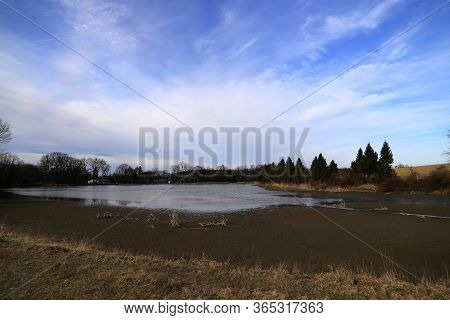 Pine Pond On A Background Of Blue Sky With Clouds, Still Life By The Water