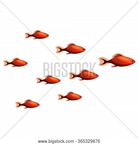 A Flock Of Small Fish. Bright Tropical Fishs. Isolated On White. Underwater World.