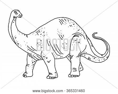 Stylized Herbivore Dinosaur Coloring Page Diplodocus On An Isolated White Background. Anitstress And