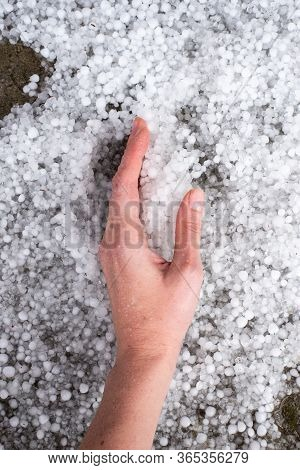 Hand Lies On The Ground Strewn With Hail. A Strong Thunderstorm With Hail