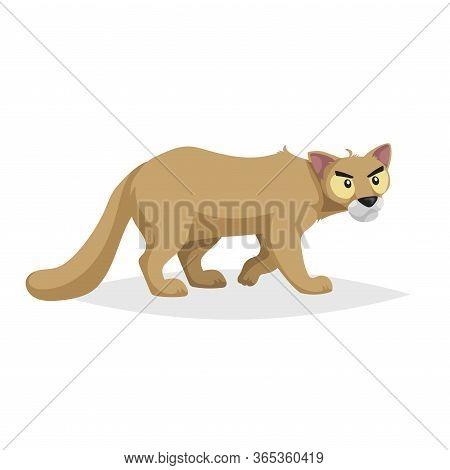Cute Cartoon Cougar. Wild Animal. Vector Illustration For Child Books. Danger Predator Animal. Isola