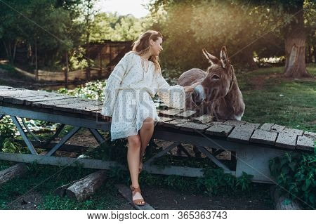 A Young Woman Is Standing Near Donkey And Laughing. Model On Summer Field With Donkey .