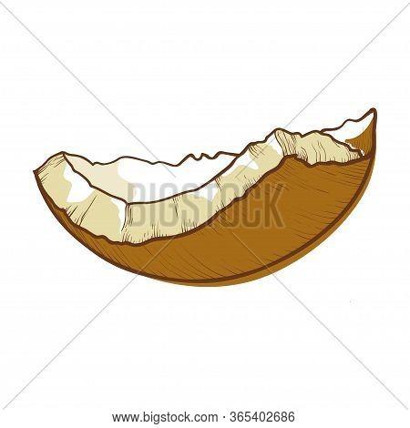 Coconut Half Shell Icon, Cracked Brown Coco Nut