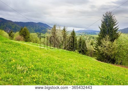 Green Meadows Of Mountainous Countryside. Cloudy Weather In Springtime. Ridge In The Distance. Beaut