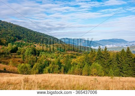 Mountain Landscape On Early Autumn Morning.  Open View With Forest On The Meadow In Front Of A Dista