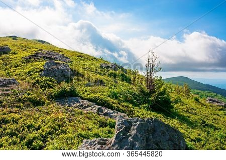 Great Alpine Scenery In Summertime. Beauty If Green And Blue Colors In Nature. Stunning Mountain Sce
