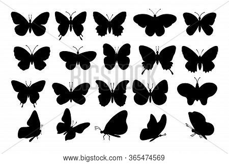 Butterflies Silhouettes. Spring Butterfly Silhouette Collection Isolated On White Background