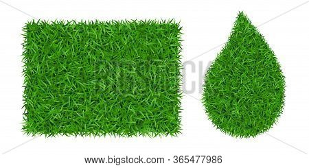 Green Grass Background 3d Set. Lawn Greenery Nature Drop, Grass Frame Isolated On White. Field Textu