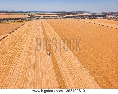 Aerial View Of Combine Harvester Agricultural Machinery Harvesting Wheat Crops In Cultivated Field,
