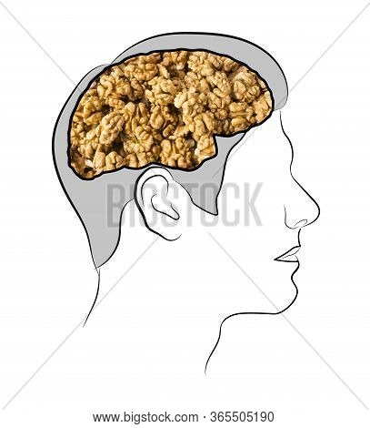 Food For Brain, The Human Brain From The Walnuts. Walnuts In The Ead. Human Silhouette With Shelled